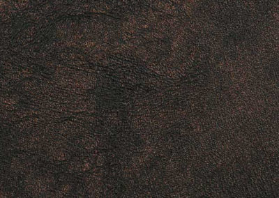 Rhino - Abyss (03)