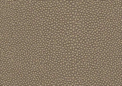 Shagreen - Parch (02)